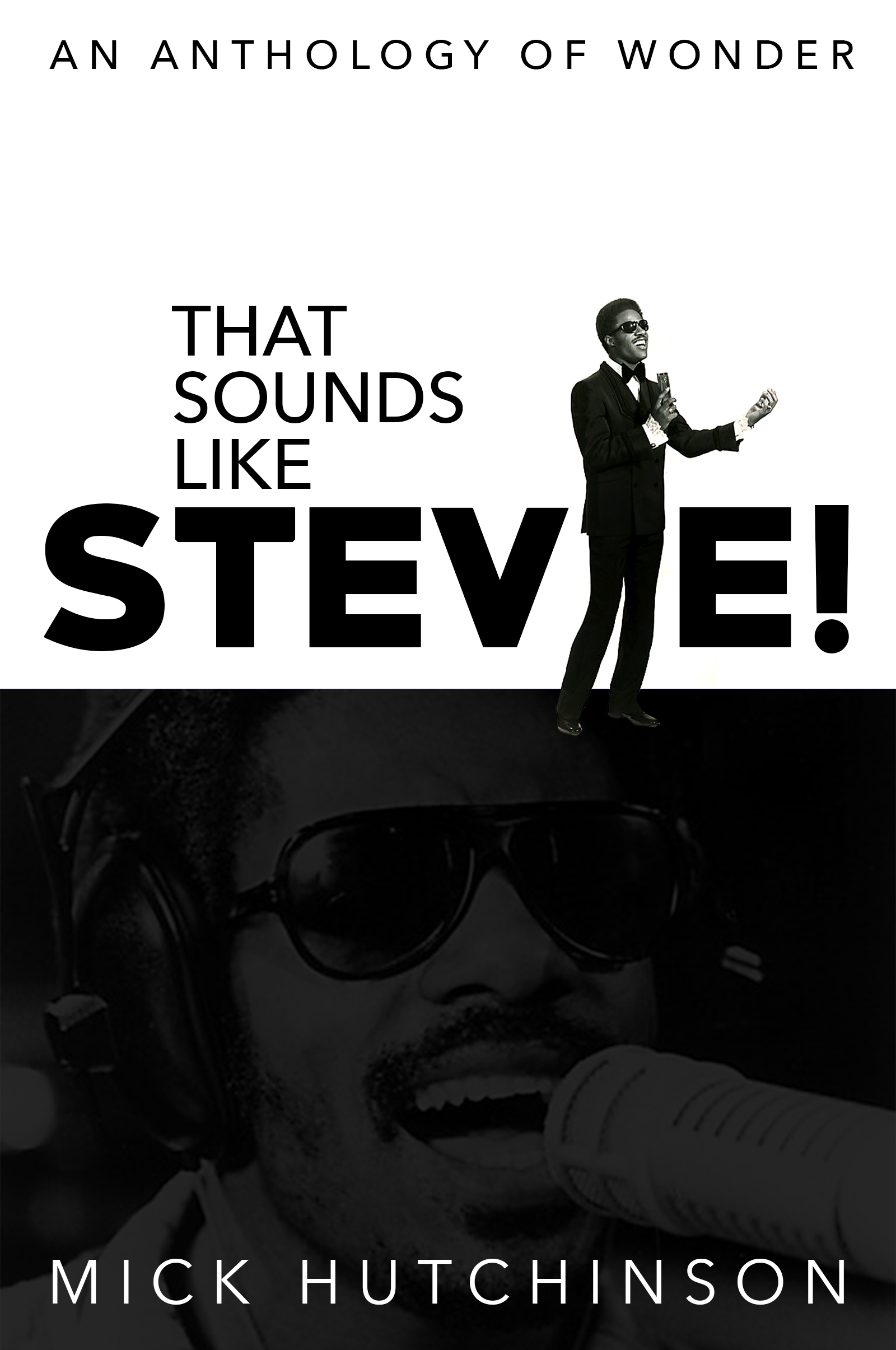 52bc04548 That Sounds Like Stevie! by Mick Hutchinson – Sixth Element Publishing